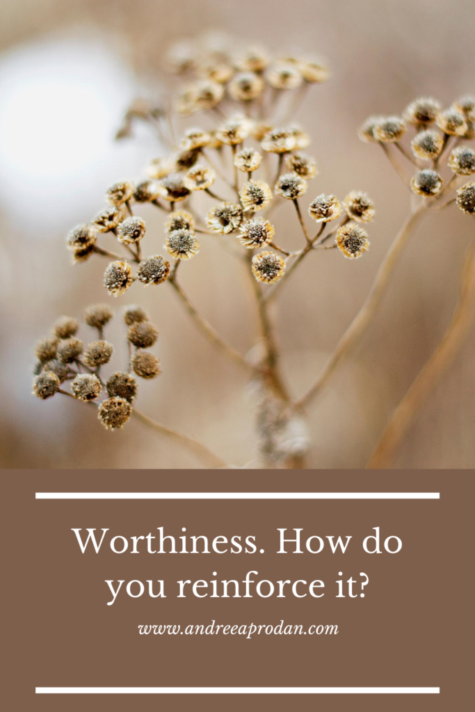 Andreea-Prodan-worthiness-683x1024 Worthiness. How do you reinforce it? PERSONAL GROWTH