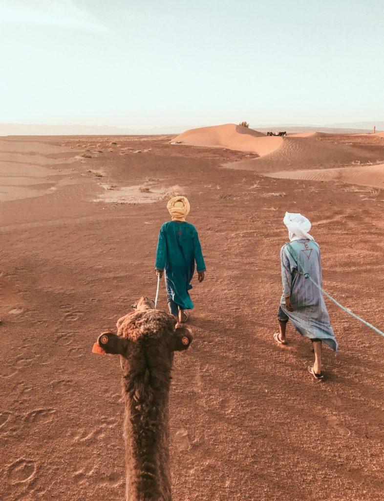 IMG_9886-scaled-e1593699019443-786x1024 A NIGHT IN THE SAHARA DESERT TRAVEL