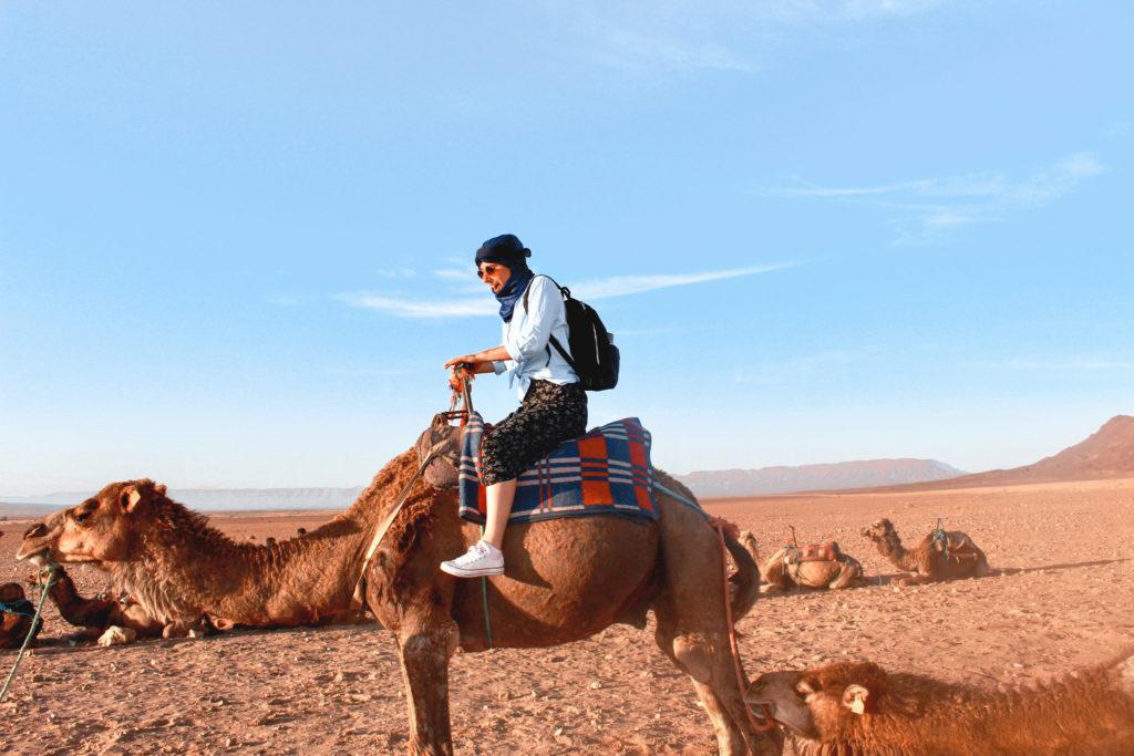 IMG_9956-1024x683 A NIGHT IN THE SAHARA DESERT TRAVEL