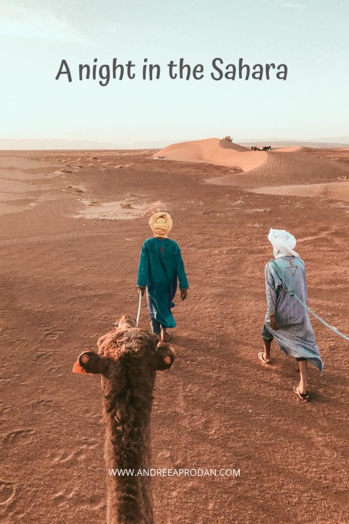 SAHARA-683x1024 A NIGHT IN THE SAHARA DESERT TRAVEL