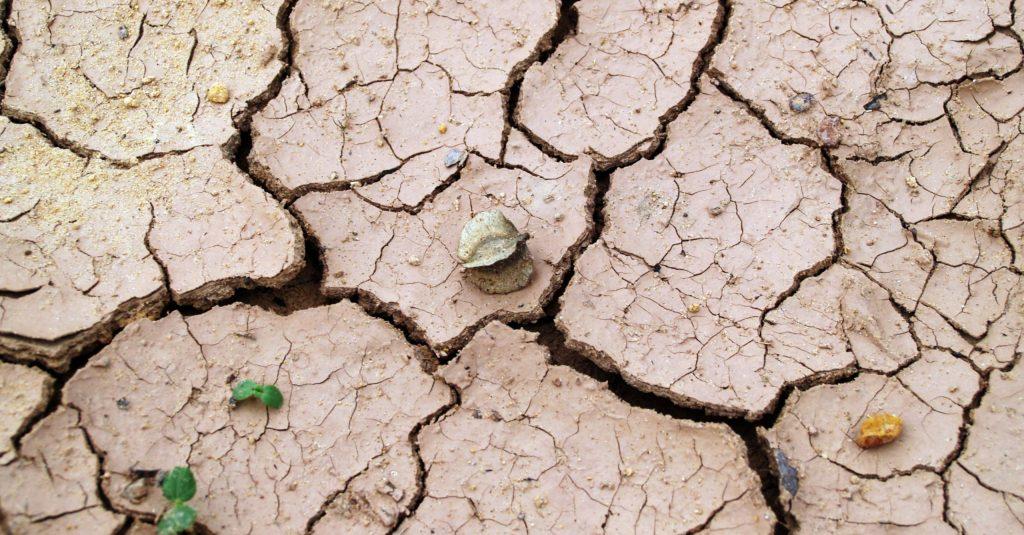 Dried-soil-cotton-industry-Andreea-Prodan-scaled-oul7rmlz90xfmws49x0nu69af32ybbueyi5onvl7mu BRIEF INTRODUCTION TO FAST FASHION LIFESTYLE
